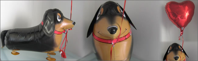 Puppy Love Airwalker balloon for Valentines Day!