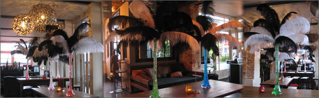 Ostrich feather centrepieces for corporate events,  Auckland Parties